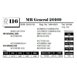 MR General 20169