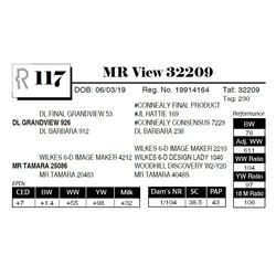 MR View 32209