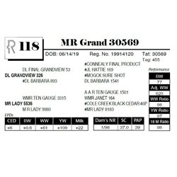 MR Grand 30569