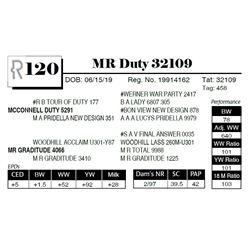 MR Duty 32109