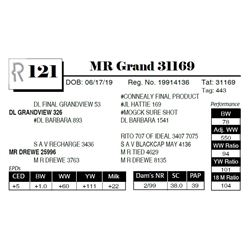 MR Grand 31169
