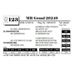 MR Grand 26249