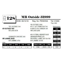 MR Outside 31999