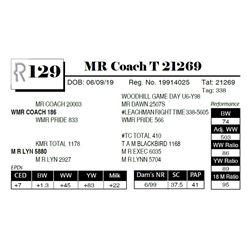 MR Coach T 21269
