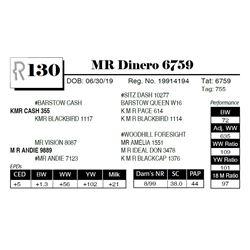 MR Dinero 6759