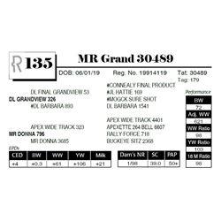 MR Grand 30489