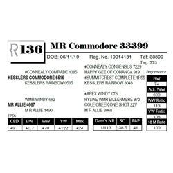 MR Commodore 33399