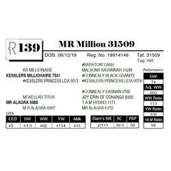 MR Million 31509