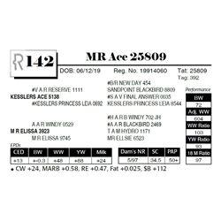 MR Ace 25809