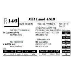 MR Lund 4819