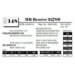 MR Reserve 32709