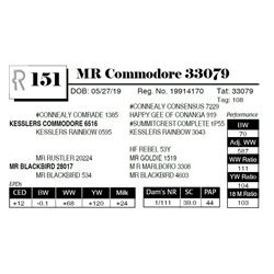 MR Commodore 33079