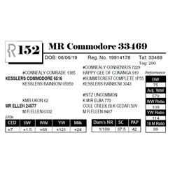 MR Commodore 33469
