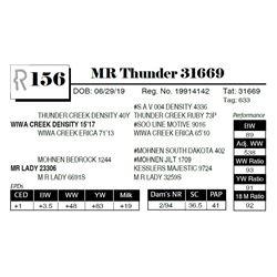 MR Thunder 31669