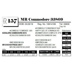MR Commodore 33809