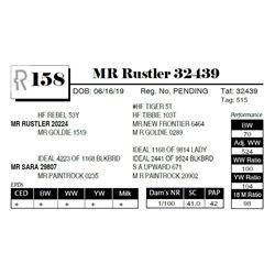 MR Rustler 32439