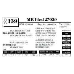 MR Ideal 27059