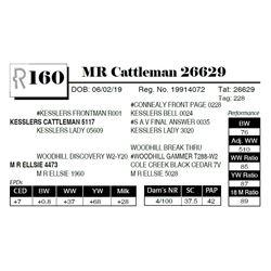 MR Cattleman 26629