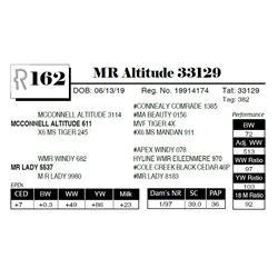 MR Altitude 33129