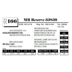 MR Reserve 33839