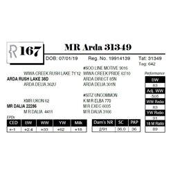 MR Arda 31349