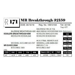 MR Breakthrough 32159