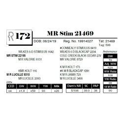 MR Stim 21469