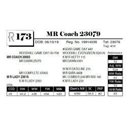 MR Coach 23079