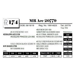MR Ace 20779