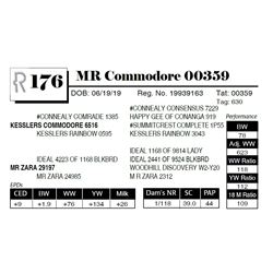 MR Commodore 00359