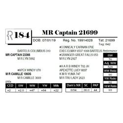 MR Captain 21699