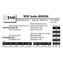 MR Arda 30329