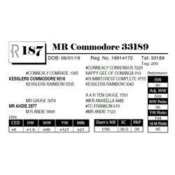MR Commodore 33189