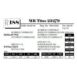 MR Titus 23279