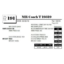 MR Coach T 19319