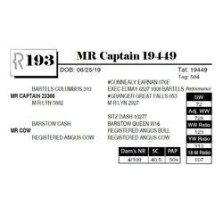 MR Captain 19449