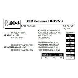MR General 00289