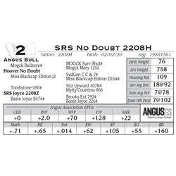 SRS No Doubt 2208H