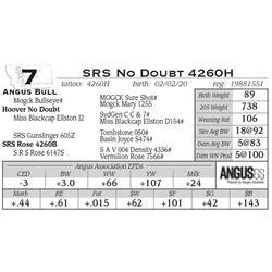 SRS No Doubt 4260H