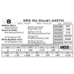 SRS No Doubt 4457H