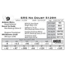 SRS No Doubt 5129H