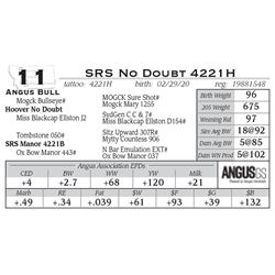SRS No Doubt 4221H