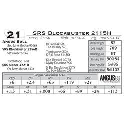 SRS Blockbuster 2115H