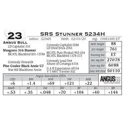 SRS Stunner 5234H
