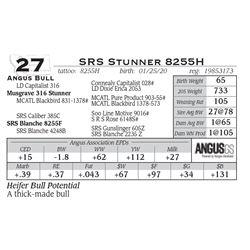SRS Stunner 8255H