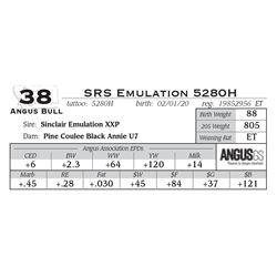 SRS Emulation 5280H