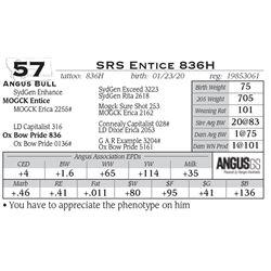 SRS Entice 836H