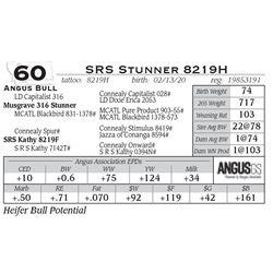 SRS Stunner 8219H