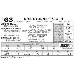 SRS Stunner 7231H
