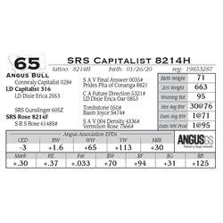SRS Capitalist 8214H
